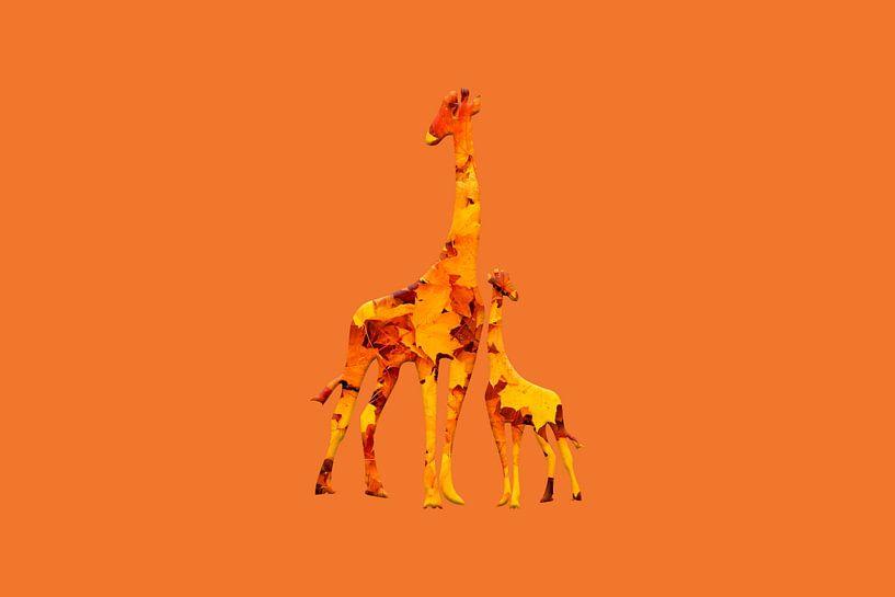 Girafolios von Catherine Fortin