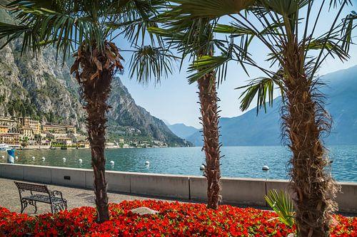 LAKE GARDA Gorgeous Riverside in Limone sul Garda