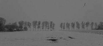 Winterlandschap Valthermond von Kees Rustenhoven