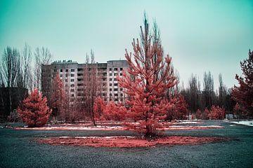 Die Natur übernimmt in Pripjat Infrarot von Lars Beekman