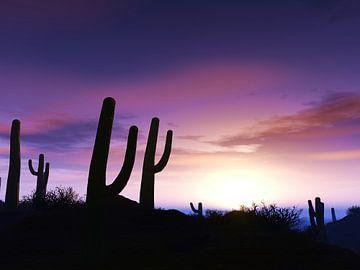 Schöner Sonnenuntergang von Alexandra Kleist