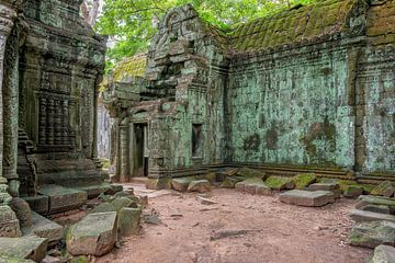 Ta Prohm tempel van Richard van der Woude