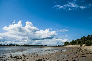 Elbe strand in Wedel #1 van