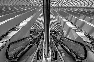 Treinstation Luik -Guillemins von Karl Smits