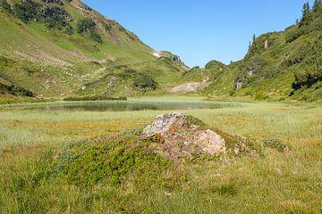 Bergmeer von Johan Vanbockryck
