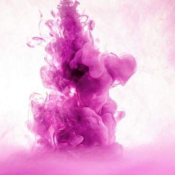roze van Silvio Schoisswohl