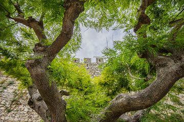 Kasteelmuur Montemor-o-Velho, Portugal van Kaj Hendriks