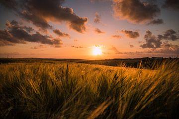 Zonsondergang met uitzicht over Engelse velden. van Marleen Kuijpers