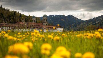 Lente in het klooster van Einsiedeln van Pascal Sigrist - Landscape Photography