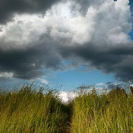 Bewolkt van Sonja Pixels