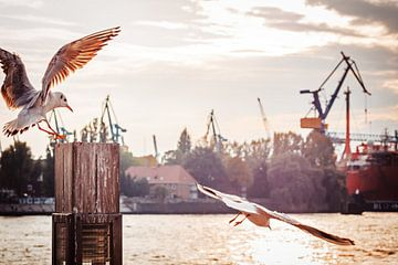 Hamburg Harbour sur Alexander Voss
