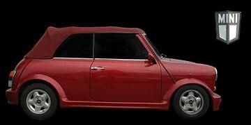 Mini cabriolet 1275cc van aRi F. Huber