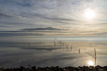 Wintersonne IJsselmeer von Sybe Postma