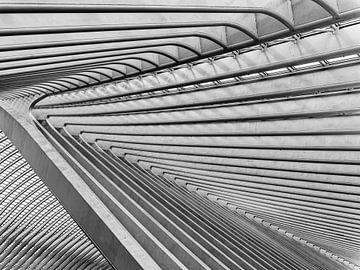 Abstracte en herhalende patronen op het treinstation van Luik (Gare de Liège-Guillemins) van John Trap