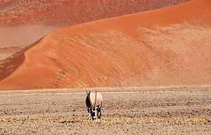 Gemsbok zandduinen landschap, Sossusvlei, Namibie van