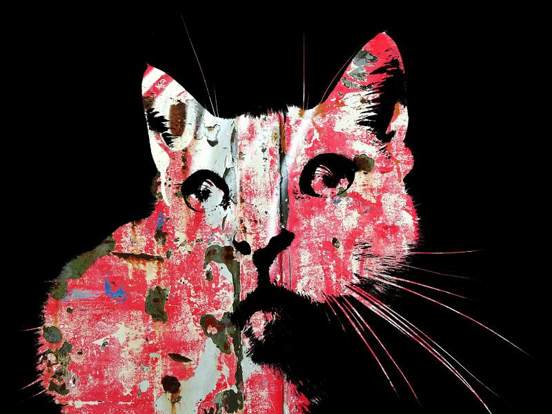 Kattenkunst - Indy 4