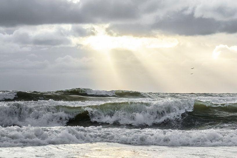 this is the sea van Dirk van Egmond