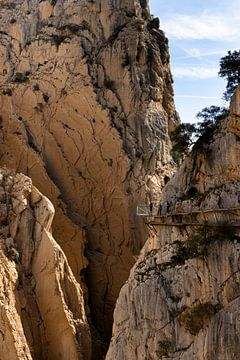 Spanien, Andalusien, Caminito del Rey Schlucht von Marianne van der Zee