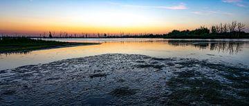 Zonsopkomst op Nationaal Park de Biesbosch van Domenique van der Horst