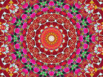 Lakritz-Mandala in Rot von Caroline Lichthart