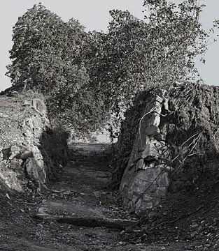 Rotspassage van Babetts Bildergalerie