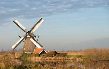 windmills in Kinderdijk Holland von Compuinfoto .