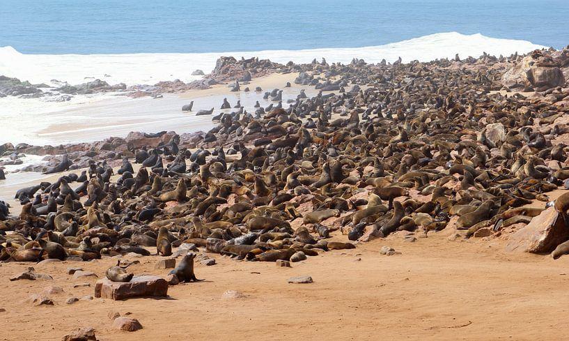 Honderden zeehonden op een kluitje, Namibië van Inge Hogenbijl
