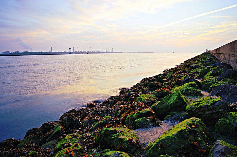 Along the Coast van Remy De Milde