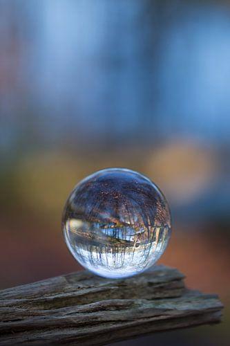 Door een glazen bal #4