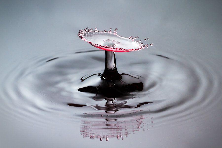 Rode splash van Dennis van de Water