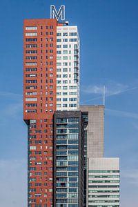 Montevideo Rotterdam van