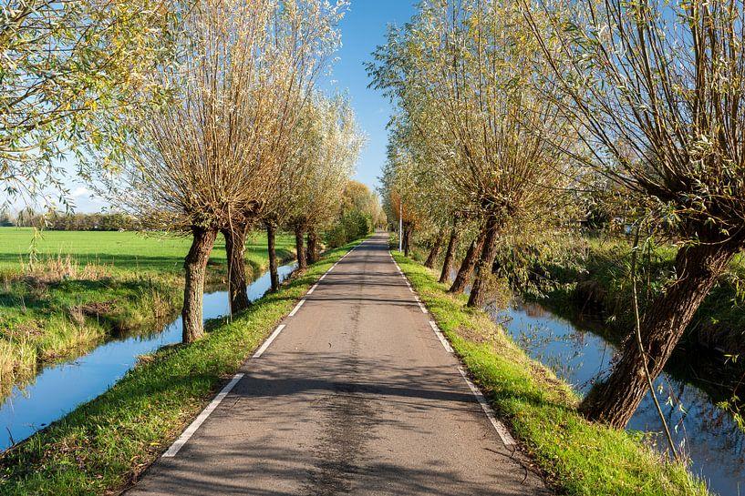 Niederländische Polderlandschaft bei Woerden von Rob IJsselstein