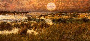 Planet Texel
