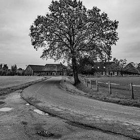 Natuurgebied Moerenburg bewolkt en grijs van Freddie de Roeck