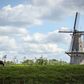Moulin sur Anton Van Beek
