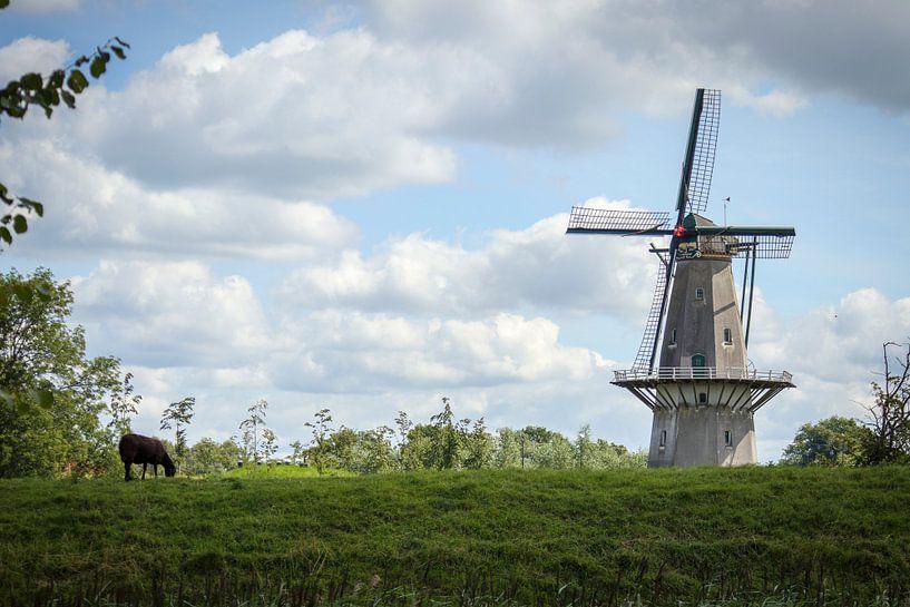 Molen van Anton van Beek