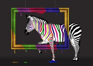 Zebra rainbow van