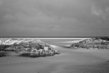 Strand und Dünen in Zeeland von Wytze Plantenga