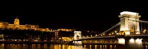 De Kettingbrug in Boedapest met het Koninklijk paleis van