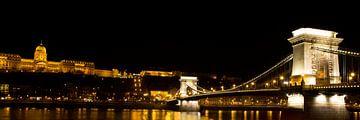 De Kettingbrug in Boedapest met het Koninklijk paleis von Willem Vernes