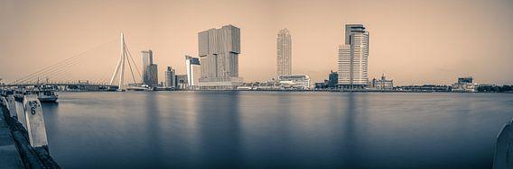 Rotterdam Panorama duotone