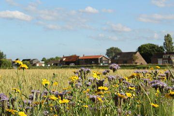 Unser Dorf von Esther Leijten-Kupers