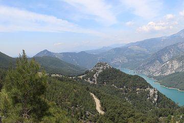 Grüner Canyon von Aart Lambertus Rietveld
