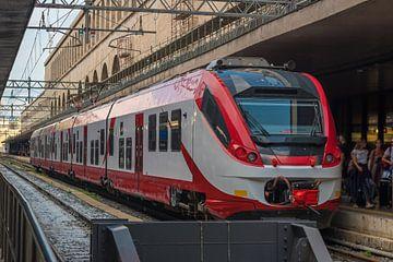 Een reizigerstrein stopte op het Roma-treinstation in Rome - Italië van Castro Sanderson