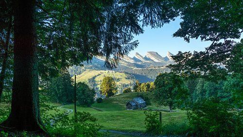 Boerenschuur in Wildhaus (Zwitersland) van