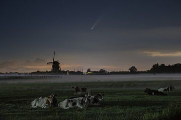 Mühle Vier-Gang, Kühe und Komet Neowise von Wilco Bos