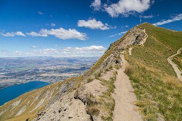 Roys Peak, Lake Wanaka van Willem Vernes