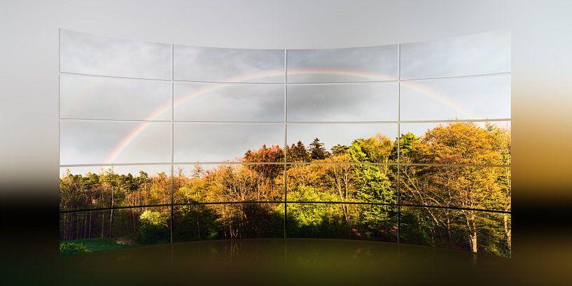 Regenbogen von Christine Nöhmeier