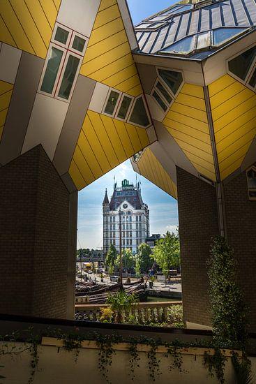 Kubuswoningen & Witte Huis van Prachtig Rotterdam