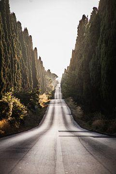 Bolgheri, Toscane, Italie sur Stefan Lucassen